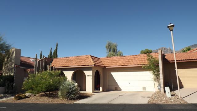4569 E Camino Rosa, Tucson, AZ 85718 (#21832081) :: The KMS Team