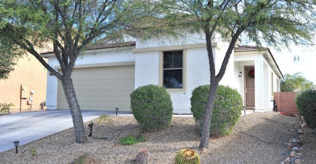 12956 N Lea Maw Drive, Marana, AZ 85653 (#21832093) :: Gateway Partners at Realty Executives Tucson Elite