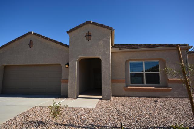 8869 W Saguaro Skies Road, Marana, AZ 85653 (#21832151) :: Gateway Partners at Realty Executives Tucson Elite