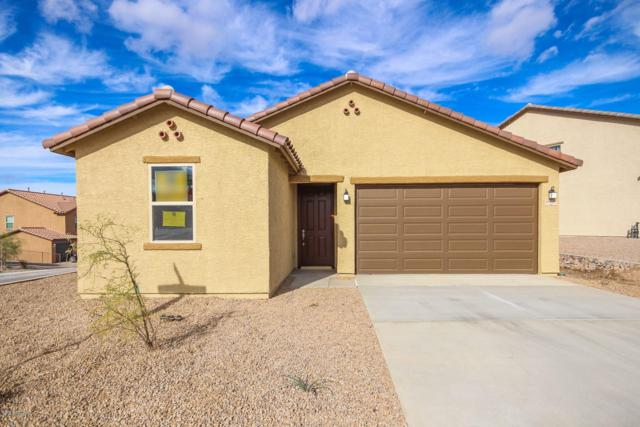 10827 E Painted Mesa Place, Vail, AZ 85641 (#21832170) :: Gateway Partners at Realty Executives Tucson Elite