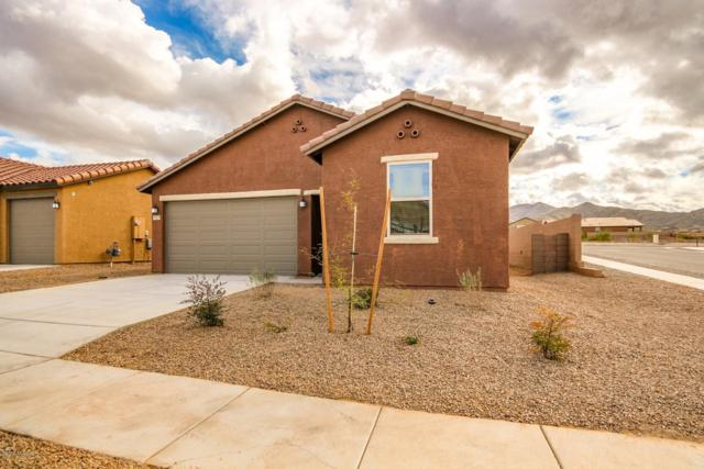 10828 E Painted Mesa Place, Vail, AZ 85641 (#21832171) :: Gateway Partners at Realty Executives Tucson Elite