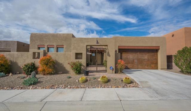 12331 N Sunrise Shadow Drive, Marana, AZ 85658 (#21832231) :: Gateway Partners at Realty Executives Tucson Elite