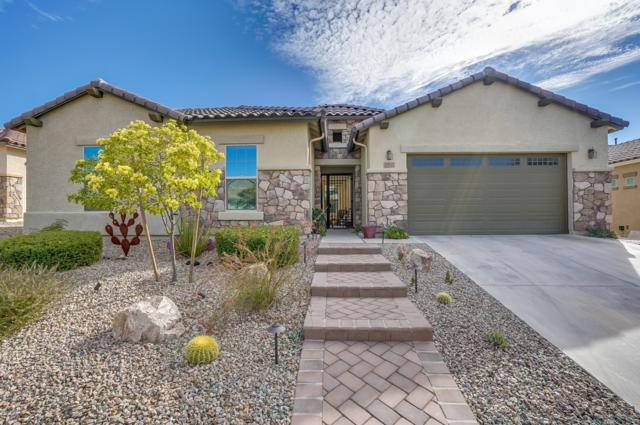 12522 N Wind Runner Parkway, Marana, AZ 85658 (#21832253) :: Long Realty Company