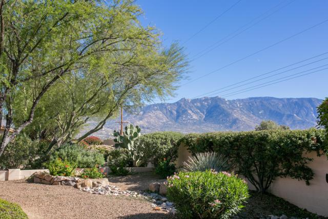 61667 E Border Rock Road, Tucson, AZ 85739 (#21832276) :: Gateway Partners at Realty Executives Tucson Elite
