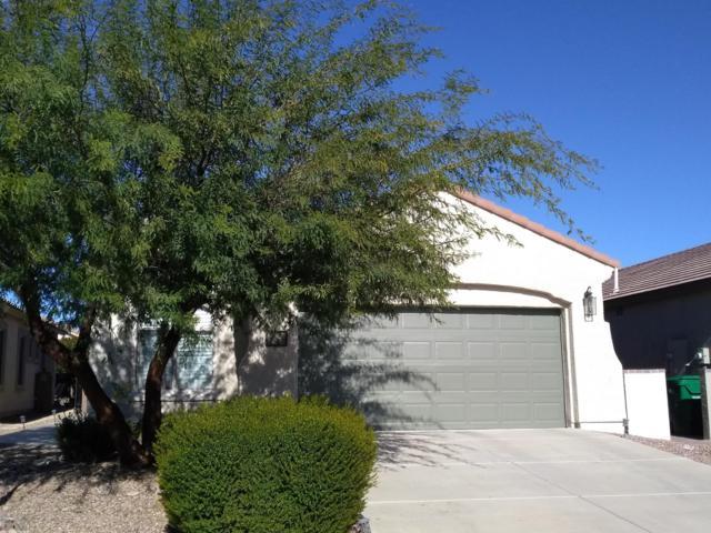 182 W Calle Del Estribo, Sahuarita, AZ 85629 (#21832332) :: Gateway Partners at Realty Executives Tucson Elite