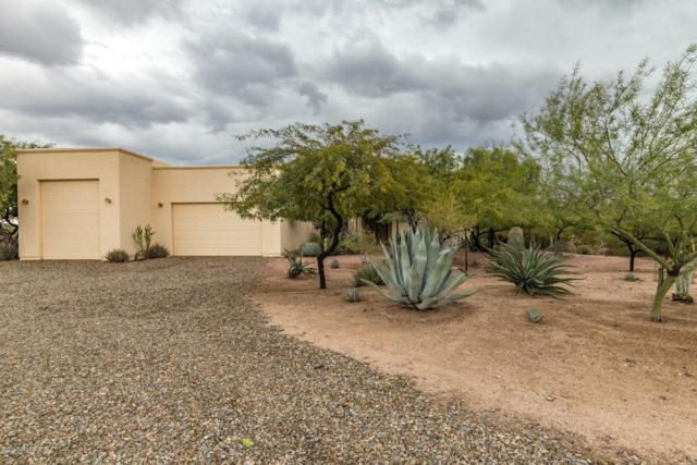 29964 E Hemlock Drive, Marana, AZ 85658 (#21832370) :: The KMS Team