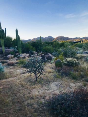 657 W Granite Gorge Drive W #332, Tucson, AZ 85755 (#21832372) :: Gateway Partners at Realty Executives Tucson Elite