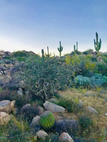 623 W Granite Gorge Drive W #333, Tucson, AZ 85755 (#21832374) :: Gateway Partners at Realty Executives Tucson Elite