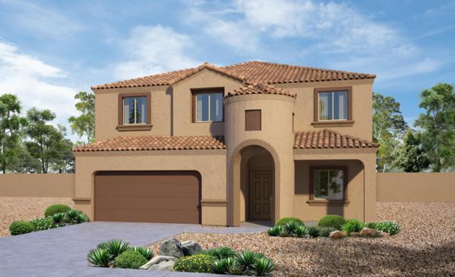 11689 W Fayes Glen Drive, Marana, AZ 85653 (#21832400) :: The KMS Team