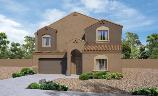 11703 W Fayes Glen Drive, Marana, AZ 85653 (#21832401) :: Long Realty Company