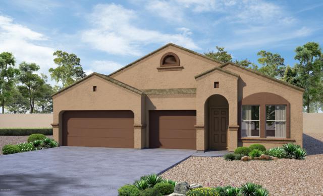 11706 W Fayes Glen Drive, Marana, AZ 85653 (#21832404) :: The KMS Team