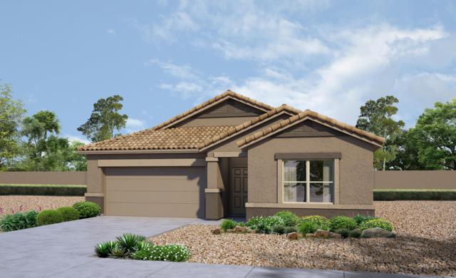11714 W Fayes Glen Drive, Marana, AZ 85653 (#21832405) :: The KMS Team