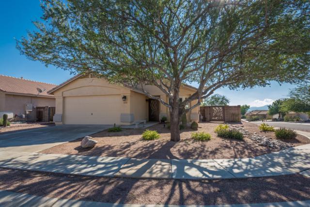 5577 W Panther Butte Street, Marana, AZ 85658 (#21832444) :: The KMS Team