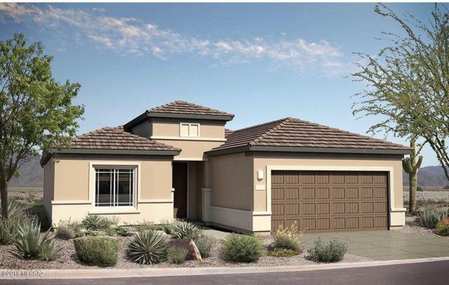 14043 E Via Cerro Del Molino E, Vail, AZ 85641 (#21832546) :: Realty Executives Tucson Elite