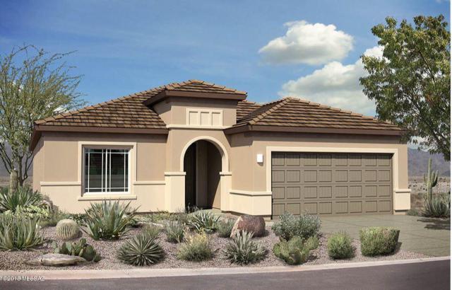 14112 E Via Cerro Del Molino E, Vail, AZ 85641 (#21832573) :: Realty Executives Tucson Elite