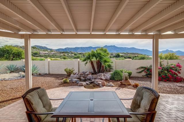 64751 E Catalina View Drive, Tucson, AZ 85739 (#21832649) :: The Local Real Estate Group | Realty Executives