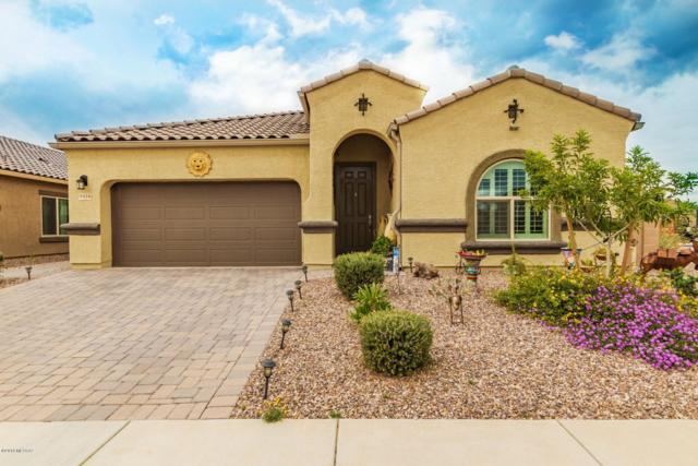 9016 W Birchover Drive, Marana, AZ 85653 (#21832653) :: Realty Executives Tucson Elite