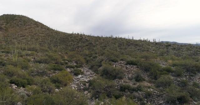 TBD N Avenida De La Colina 0, Tucson, AZ 85749 (#21832663) :: The Josh Berkley Team