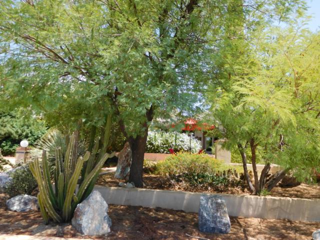 7101 N Corrida De Venado, Tucson, AZ 85718 (#21832675) :: Keller Williams