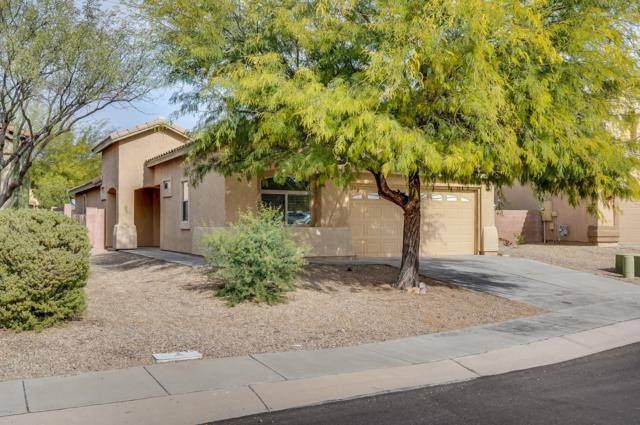 951 E Spring Water Canyon Drive, Sahuarita, AZ 85629 (#21832695) :: Long Realty Company