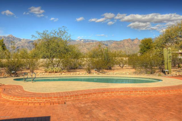 9085 E Indian Canyon Road, Tucson, AZ 85749 (#21832736) :: The Josh Berkley Team