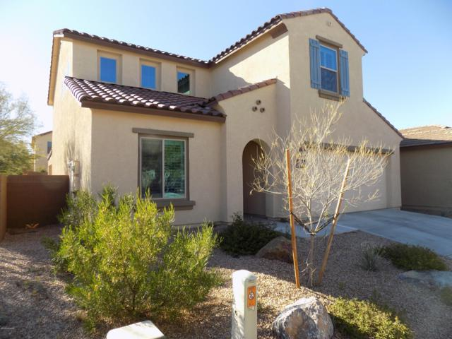 10580 E Willow Shade Place, Tucson, AZ 85747 (#21832934) :: Long Realty Company