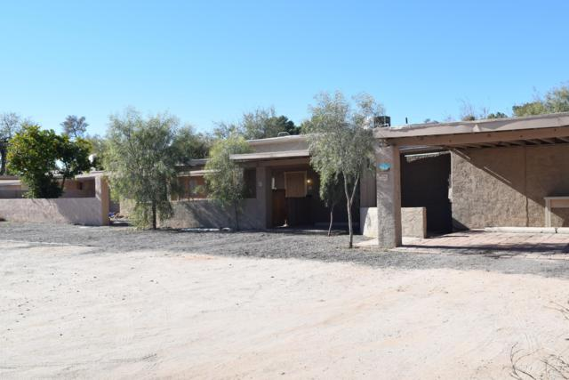 241 W Roger Road, Tucson, AZ 85705 (#21833187) :: The KMS Team