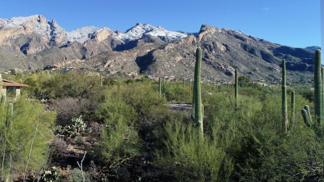 6641 N Montezuma Drive #456, Tucson, AZ 85718 (#21833334) :: The Local Real Estate Group | Realty Executives