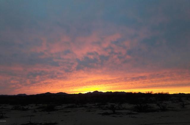 13231 W Snyder Hill Road #36, Tucson, AZ 85735 (#21833363) :: Long Realty Company