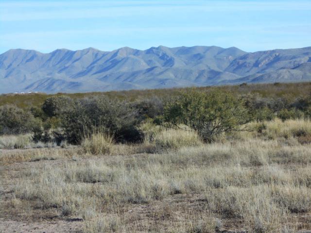Gordon Ranch Rd. - 81 Acres #0, Douglas, AZ 85607 (#21833368) :: Long Realty - The Vallee Gold Team