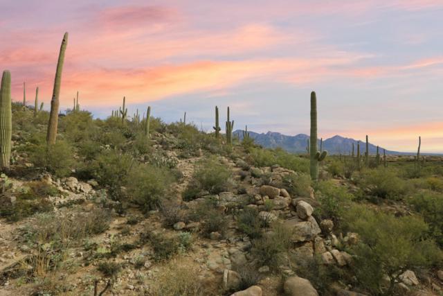 1805 Tortolita Mountain Circle #500, Oro Valley, AZ 85755 (#21833380) :: Long Realty - The Vallee Gold Team