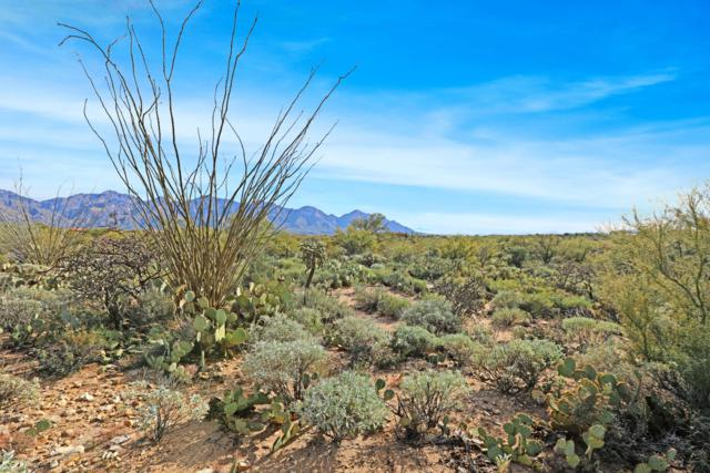 1831 W Tortolita Mountain Circle #498, Oro Valley, AZ 85755 (#21833397) :: Long Realty - The Vallee Gold Team