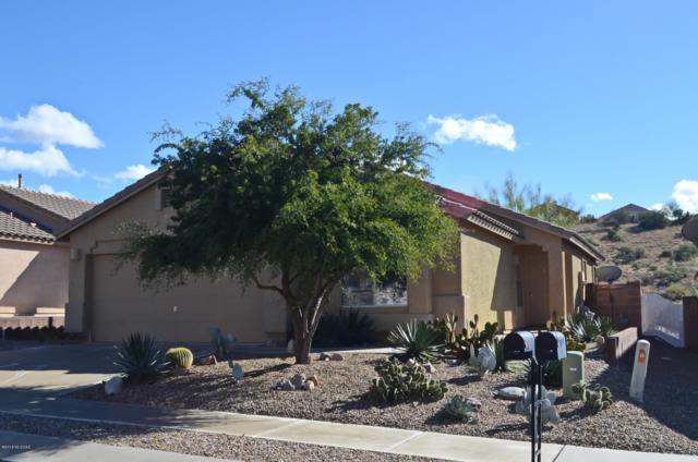 60827 E Silky Mane Drive, Saddlebrooke, AZ 85739 (#21833410) :: Long Realty Company