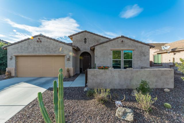 12853 N Via Vista Del Pasado, Oro Valley, AZ 85755 (#21900081) :: Long Realty - The Vallee Gold Team