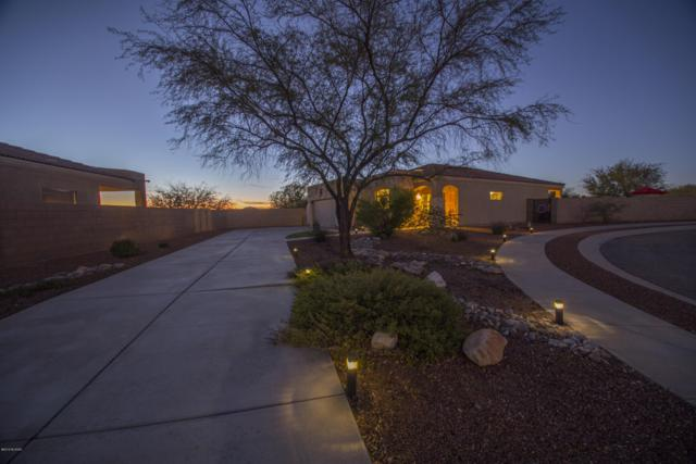 10446 S Stampede Ranch Court, Vail, AZ 85641 (#21900272) :: Long Realty Company