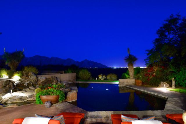 931 W Tortolita Mountain Circle, Oro Valley, AZ 85755 (#21900287) :: Long Realty - The Vallee Gold Team