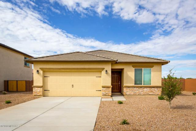 11637 W Vanderbilt Farms Way, Marana, AZ 85653 (#21900423) :: Long Realty Company