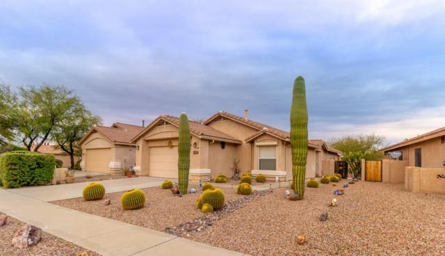 13337 N Vistoso Bluff Place, Oro Valley, AZ 85755 (#21900527) :: Long Realty - The Vallee Gold Team