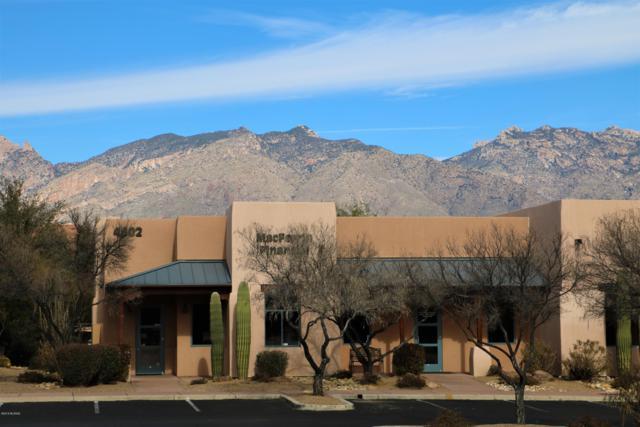 4802 E Camp Lowell Drive, Tucson, AZ 85712 (#21900833) :: The Josh Berkley Team