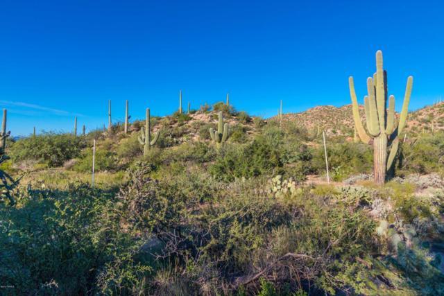 14687 N Granite Peak Place #268, Oro Valley, AZ 85755 (#21900982) :: Long Realty Company