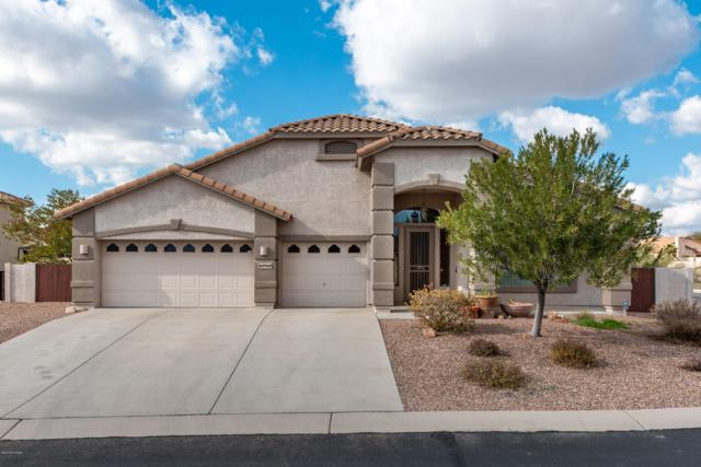 60960 E Rock Ledge Loop, Tucson, AZ 85739 (#21901137) :: The Josh Berkley Team