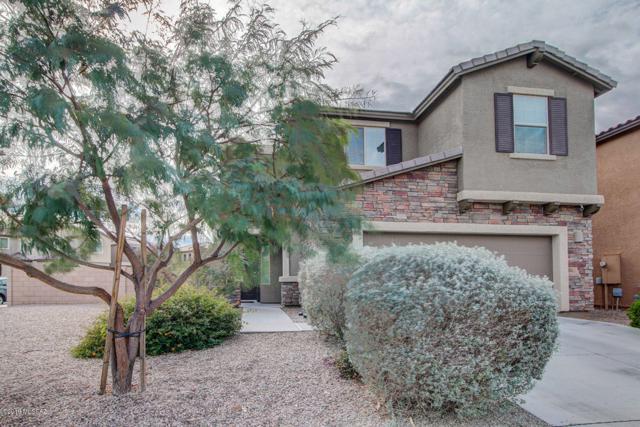 8008 S Dolphin Way, Tucson, AZ 85756 (#21901142) :: Long Realty Company