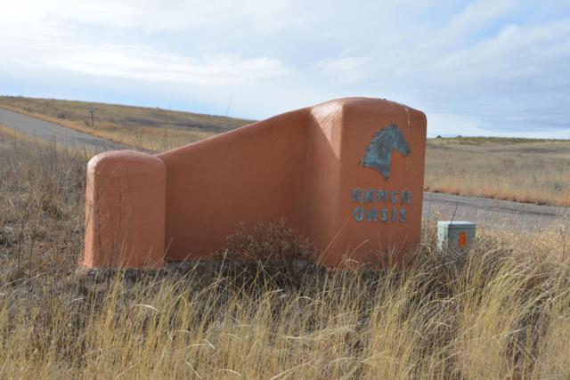 11 Ranch Oasis Drive #11, Sonoita, AZ 85637 (#21901266) :: Long Realty - The Vallee Gold Team