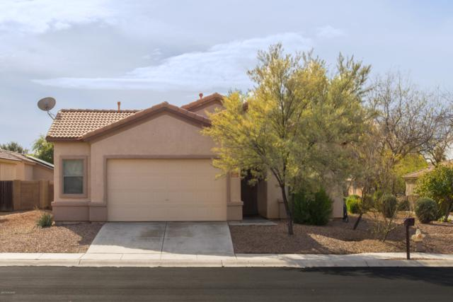 11087 W Willow Field Drive, Marana, AZ 85653 (#21901418) :: Long Realty Company