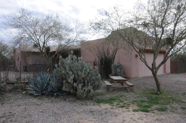 1487 S Calle Anasazi, Tucson, AZ 85735 (#21901440) :: Long Realty - The Vallee Gold Team