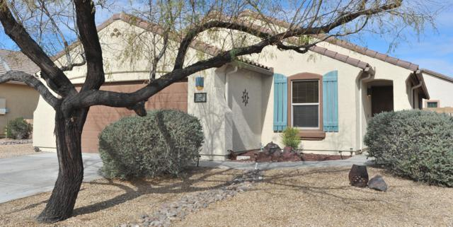 11280 W Harvester Drive, Marana, AZ 85653 (#21901465) :: Long Realty Company