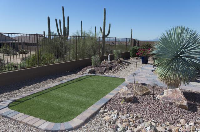 7057 W River Trail, Marana, AZ 85658 (#21901472) :: Long Realty Company