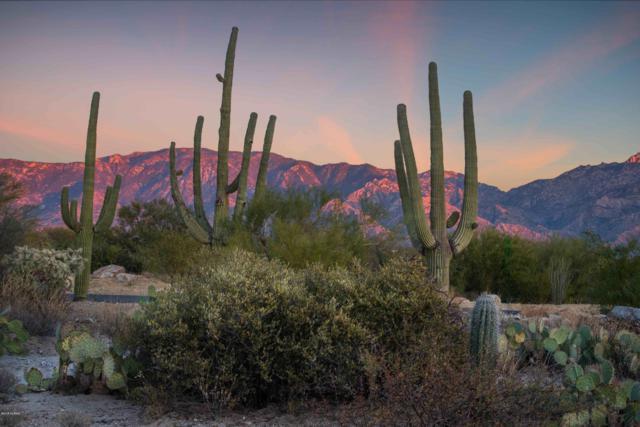 14077 N Flint Peak Place #599, Tucson, AZ 85755 (#21901683) :: Long Realty - The Vallee Gold Team