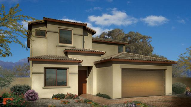 14591 S Avenida Cucana, Sahuarita, AZ 85629 (MLS #21901687) :: The Property Partners at eXp Realty