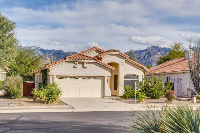 12122 N Sterling Avenue, Oro Valley, AZ 85755 (#21901755) :: Long Realty - The Vallee Gold Team
